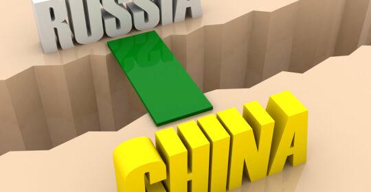 В МГУ имени М.В. Ломоносова 22 ноября прошел круглый стол «Восточный вектор российской государственной политики: вызовы и возможности».